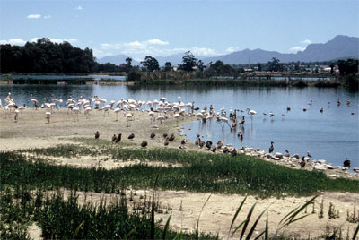 Paarl Nature Reserve