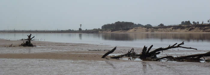 Souss Estuary
